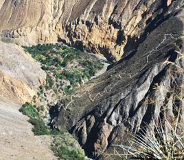 Hiking the Colca Canyon Trek to San Galle Oasis