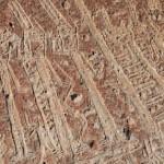 Toro Muerto Petroglyphs, Arequipa Attractions - My Peru Guide